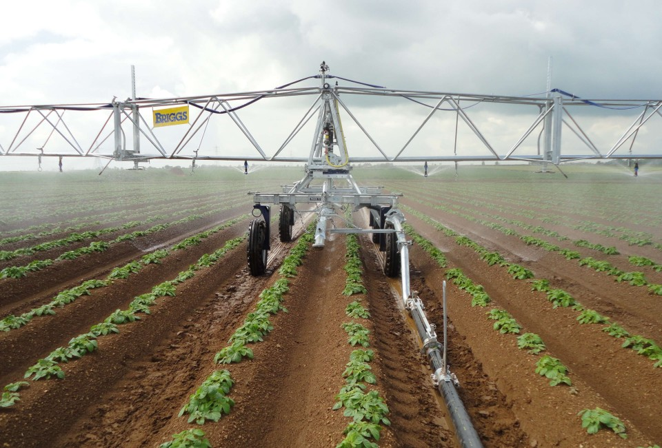 R50 2 offset waterfeed on potatoes