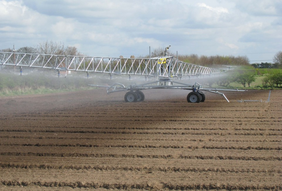 R64 2 on bare soil