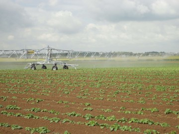 R64 2 on potatoes with headland sprinkler kit